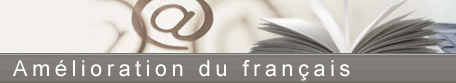 logo ccdmd